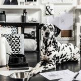 Ikea-nouveautes-collection-Lurvig-animaux-chiens-chat-12