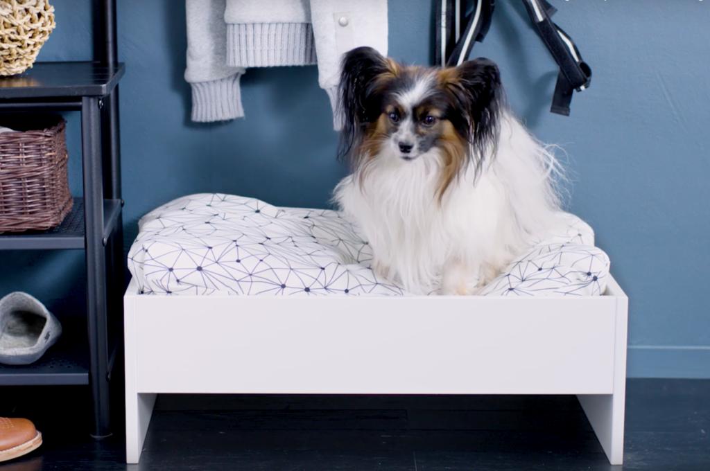 Ikea-nouveautes-collection-Lurvig-animaux-chiens-coussin-2