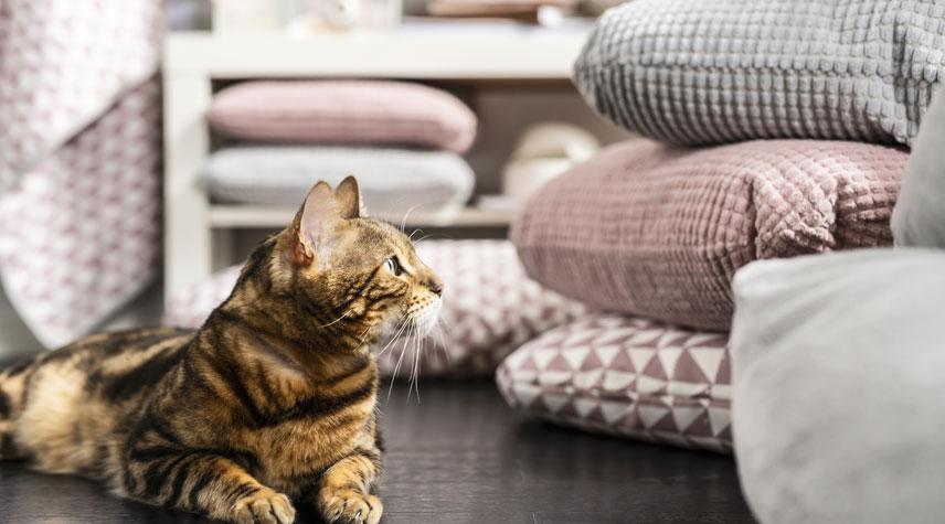 Ikea-nouveautes-collection-Lurvig-animaux-coussin-chat-1