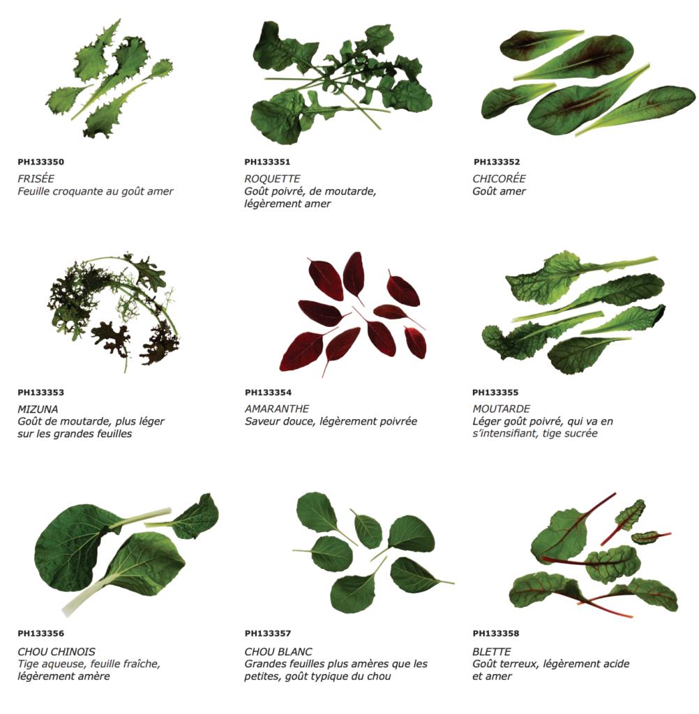 ikea-jardin-interieur-hydroponique-vaxer-krydda-0