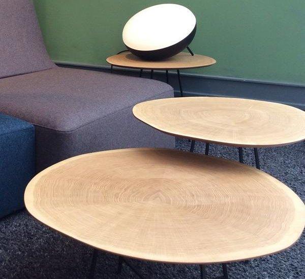 inspi-deco-ligne-roset-table-basse-bois-brut-alburni-27